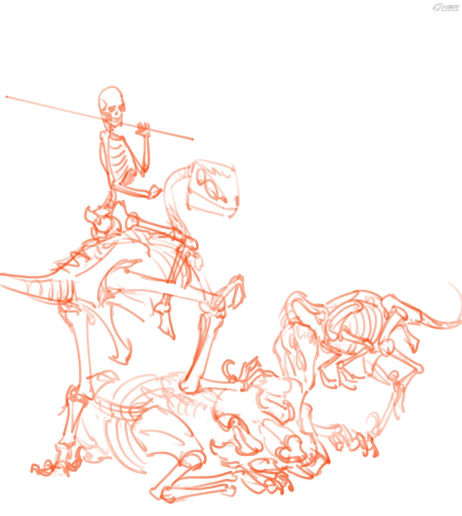 下面附上伶盗龙和剑齿虎的骨骼,人体的骨骼相信大家都很熟悉,在这里就不贴了。观察类似爬行类和鸟类的伶盗龙骨骼和哺乳类的剑齿虎骨骼之间的共同点和区别,可以帮助大家在创作虚构的怪物时画的更加真实可信。(图2)